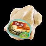 coquelet_bretagne_edenia